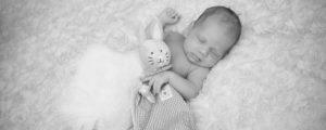Neugeborenes_baby_Hase